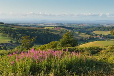 View over Quantock Hills